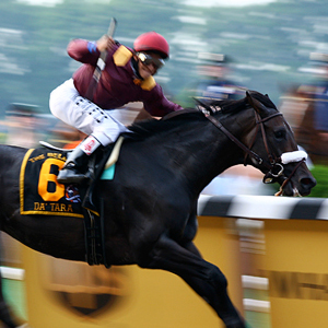 Belmont Stakes Live Horse Racing