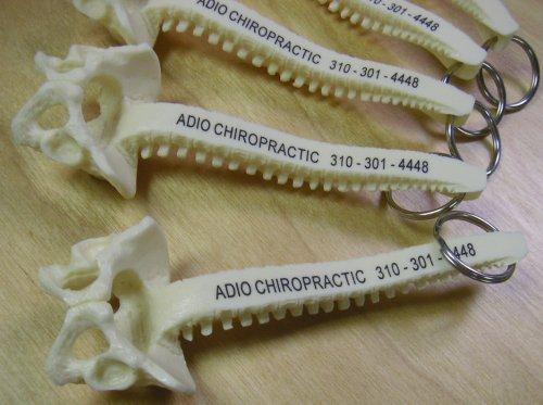 Plastic Spine Keychains