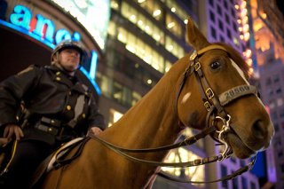 Mounted Police on Horse in Times Square - New York City